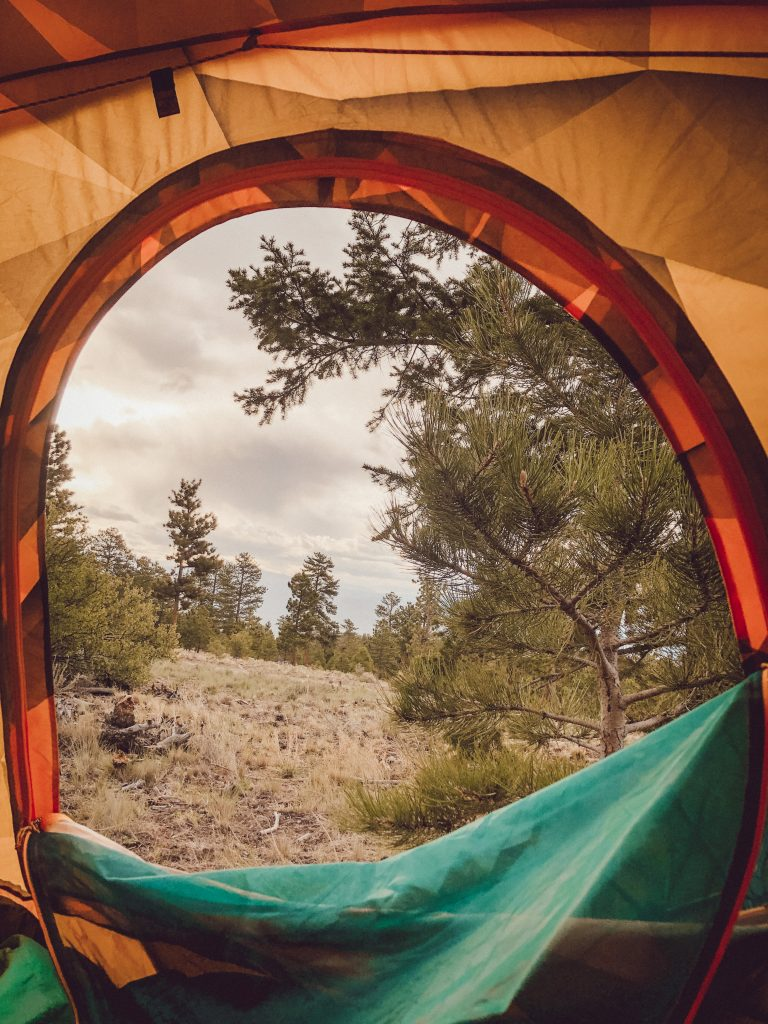 Tent View- Browns Creek